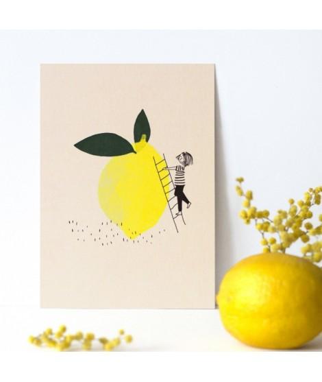 Carte postale citronnette